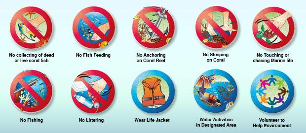 Coral Etiquette